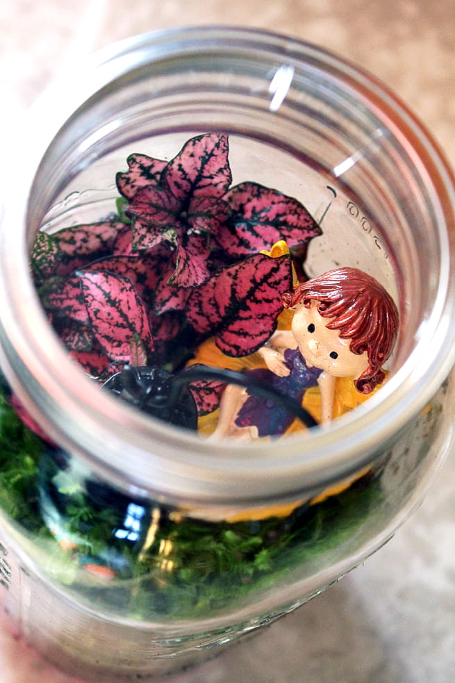 Easy Mason Jar Terrarium project