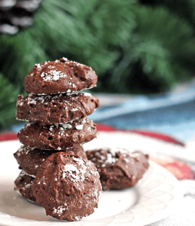 Gluten-Free Hot Chocolate Cookies - This is what it is like to eat a cup of rich and creamy hot cocoa with peppermint.
