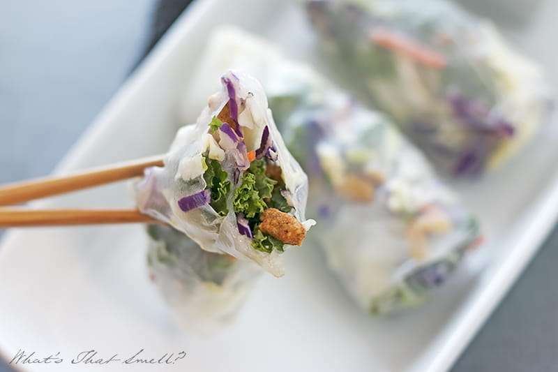 Asian Sesame Salad Summer Rolls - take your salad to the next level! Super easy to put together and great as an appetizer or side dish.