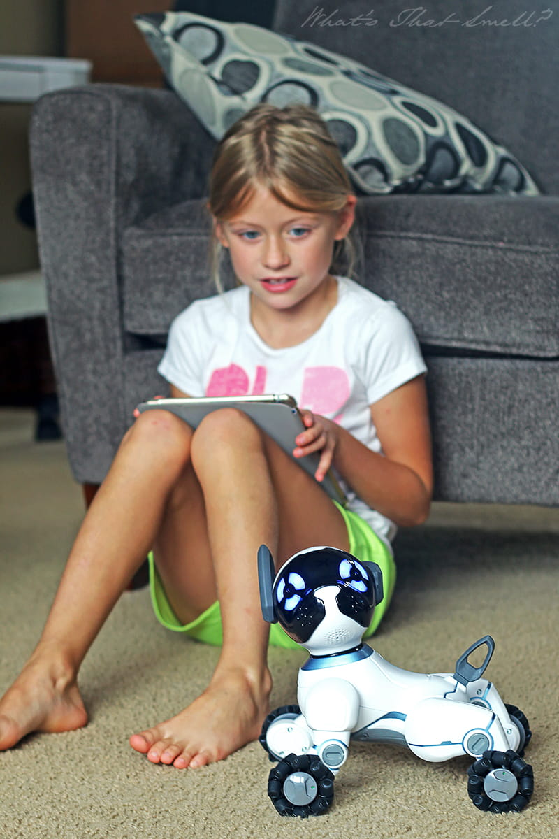 Imagination, Powered by WowWee and Duracell - WowWee toys like ChiP the Robot Dog and COJI help kids take imagination to the next level.