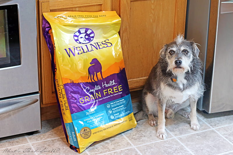 5 Signs of Wellness - Complete Health for Your Dog. Quality food from Wellness can help your dog achieve the signs of true health and wellness.