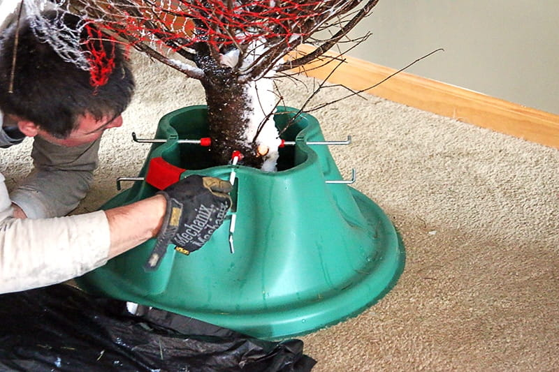 At Least There Wasn't A Squirrel In It - The Joys and Challenges of Setting Up A Real Christmas Tree.