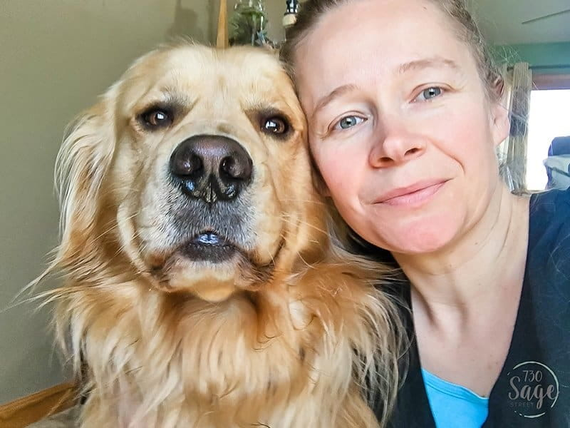 5 Ways Dogs make Your Life Better - For National Pet Month, Purina is donating $1 to Petfinder Foundation for every pet selfie shared w/ #PurinaPETtogether