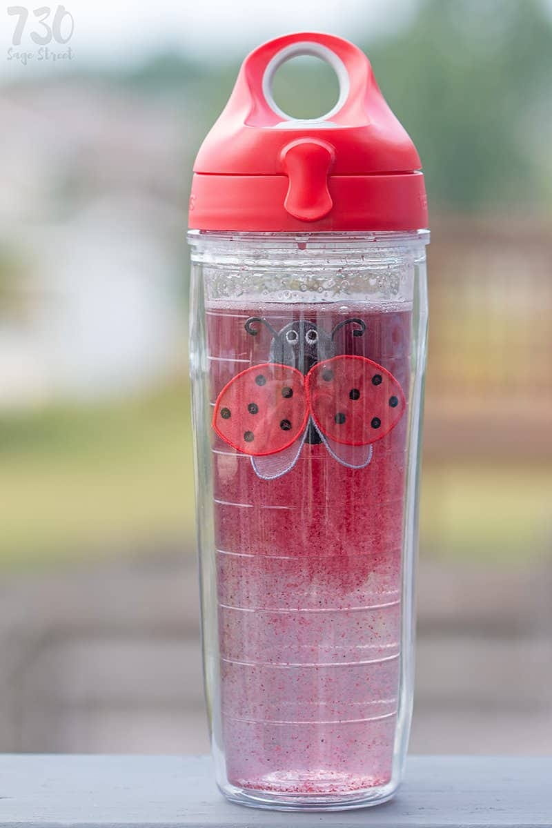 fruit ice cubes in water in a Tervis cup