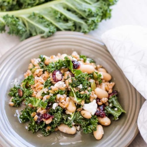 White Bean and Farro Salad with Red Wine Vinaigrette